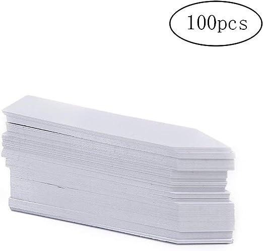100 piezas de la planta Etiquetas Jardín Maternal Etiquetas de plástico de la planta etiquetas colgantes del árbol Etiquetas Pot para Gardenâ (10 * 2cm) Blanca: Amazon.es: Amazon.es