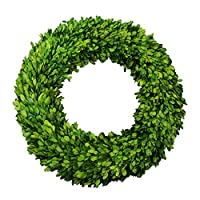 D.Jacware Boxwood Wreath Preserved Garden Boxwood Wreath 20 inch ...