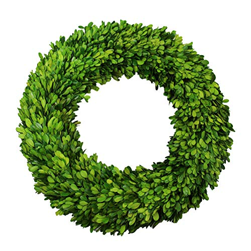 (D.Jacware Boxwood Wreath Preserved Garden Boxwood Wreath 20 inch)
