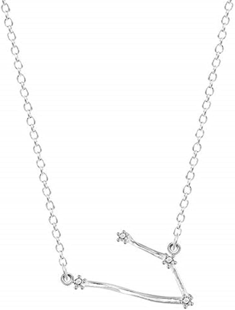 PAPPET Zodiac Sign Necklaces 925 Sterling Silver 12 Stars Zircon Horoscope Astrology Galaxy Constellation Signs Necklace Birthday Wedding Gift for Men /& Women