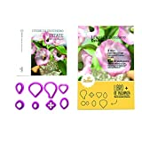 DECORA Book Summer with Kit 8 Cutters, Purple, 15 x 10 x 4 cm