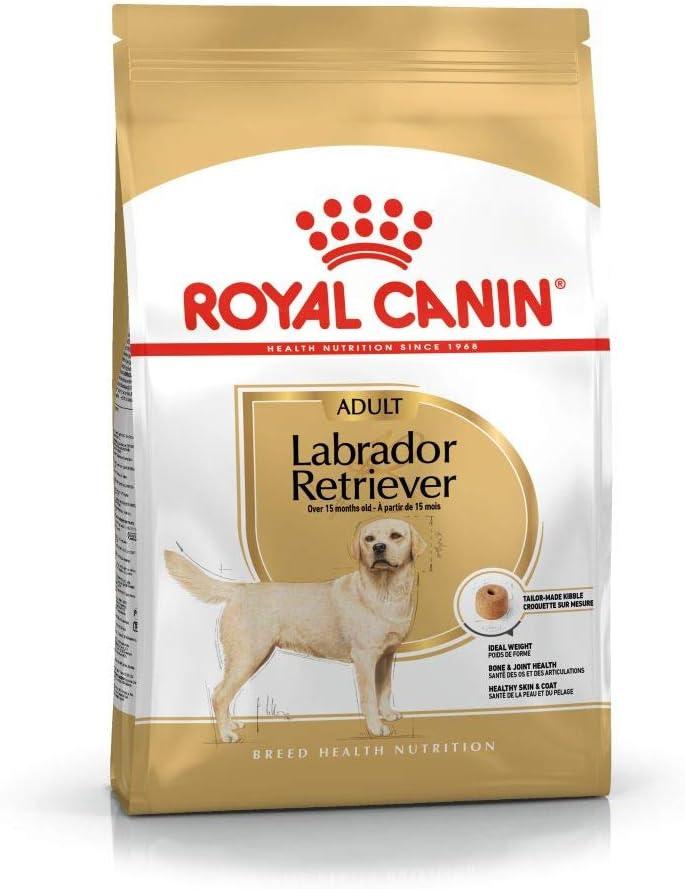 Royal Canin C-08905 S.N. Labrador 30 - 12 Kg