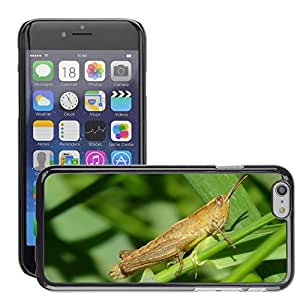 """Hot Style Cell Phone PC Hard Case Cover // M00116860 Grasshopper Macro Insect Grasshoppers // Apple iPhone 6 4.7"""""""
