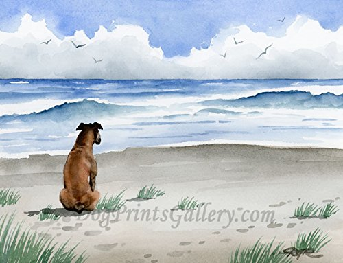 Boxer at The Beach Art Print by Watercolor Artist DJ ()