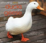 Choosing and Keeping Ducks and Geese: A Beginner's Guide to Identification, Care, and Husbandry of over 35 Species