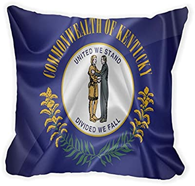 "Rikki Knight®Kentucky State Flag Microfiber Throw Décor Pillow Cushion 16"" Square (Insert Included)"