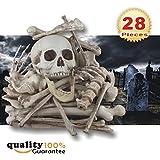 Bag of Skeleton Bones and Skull – 28 PCs Set by PMLAND