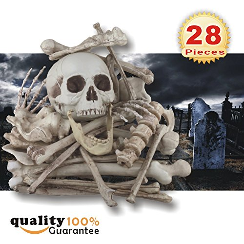 PMLAND Bag of Skeleton Bones and Skull - 28 PCs -
