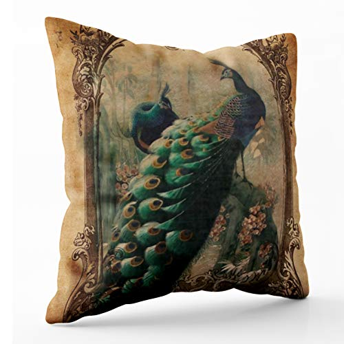 Shorping Zippered Pillow Covers Pillowcases 20X20Inch Victorian Vintage Floral Parisian Peacock Decorative Throw Pillow Cover,Pillow Cases Cushion Cover for Home Sofa Bedding