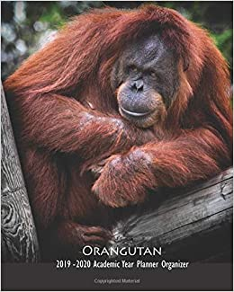 Orangutan 2019 - 2020 Academic Year Planner Organizer ...