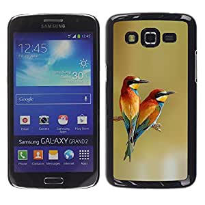 FlareStar Colour Printing Birds Love Spring Tropical Valentines Day cáscara Funda Case Caso de plástico para Samsung Galaxy Grand 2 II / SM-G7102 / SM-G7105