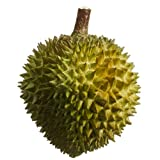 7.5'' Artificial Durian Fruit -Green (pack of 6)