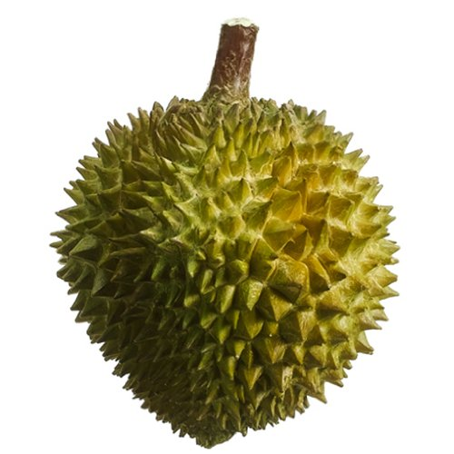 7.5'' Artificial Durian Fruit -Green (pack of 6) by SilksAreForever