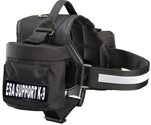 Removable Backpack Traveling removable ordering