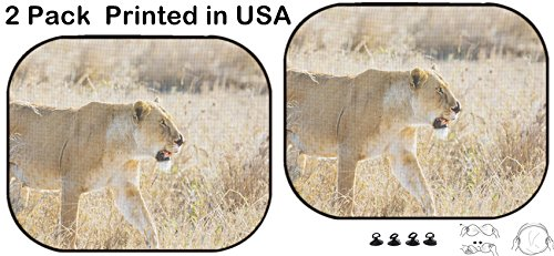 Liili Car Sun Shade Protector Block Damaging UV Rays Sunlight Heat for All Vehicles, 2 Pack Image ID: 24709525 Close up of Lioness with a Nose Injury in Serengeti Photo from ()