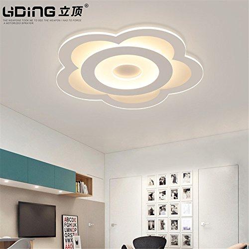 Leihongthebox Ceiling Lights lamp Floral ceiling light ultra-thin children's room girls lights for Hall, Study Room, Office, Bedroom, Living Room,420mm ()