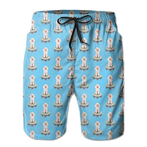 Life Pstore Mens Summer Swim Trunks Quick Dry Funny Beach Board Shorts Casual Pants Printing - Cute Poodle Dog ()
