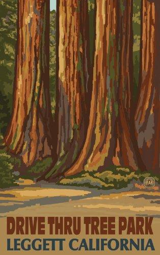 Northwest Art Mall Drive Thru Tree Park Leggett California Sequoia Trees Artwork by Paul A. Lanquist, 11-Inch by - Mall Bluegrass