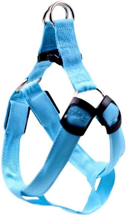 Liming Nylon Led Hundegeschirr Haustier Katze Hundehalsband Geschirr Weste Sicherheit Beleuchtetes Hundegeschirr Haustier Hunde Leuchtendes Fluoreszierendes Halsband Blau S Haustier