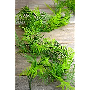 6 Ft Artifical Asparagus Fern Garland - Excellent Home Decor - Indoor & Outdoor 1