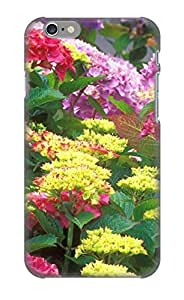 Fireingrass Case Cover For Iphone 6 - Retailer Packaging Hydrangea Blossoms Protective Case