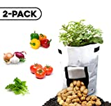 Cheap Higher Perspectiv 10-Gallon 2 Pack Garden Planter Vegetable Fruit Herb Grow Bags-Eco-friendly with Harvesting Flap & Heavy Duty Handles- Indoor & Outdoor Use