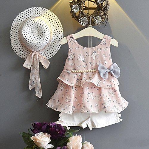 LOliSWan 3PCS Little Girls Summer Outfits Clothes Floral Vest T-Shirt Tops +Shorts Pants+Sun Hat Set (Pink, 2-3 Yesrs)