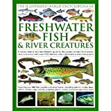 img - for The Illustrated World Encyclopedia of Freshwater Fish & River Creatures byAraya book / textbook / text book