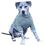 Tooth & Honey Big Dog/Stripe Shirt/Pullover/Full Belly Coverage/for Big Dogs/Pitbull Shirt/Olive and Grey (Large)