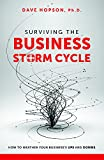 img - for Surviving The Business Storm Cycle: How To Weather Your Business's Ups and Downs book / textbook / text book