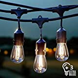 Vintage Outdoor String Lights Kit, 2W S14 LED Filament Bulbs Included, 48Ft Long Garden Patio Edison LED String Lights with 15 Hanging Sockets, Weatherproof Commercial Grade Heavy Duty, UL listed.