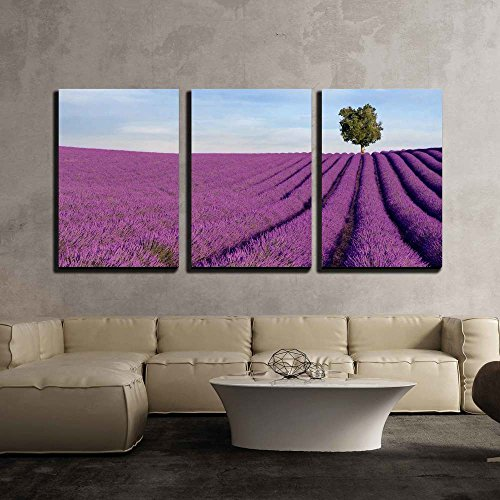 Rich Lavender Field in Provence France with a Lone Tree in the Background x3 Panels