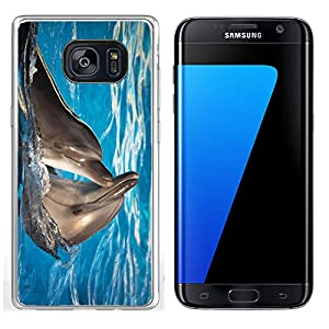 Liili Samsung Galaxy S7 Edge Clear case Soft TPU Rubber Silicone Bumper Snap Cases IMAGE ID: 11036210 Pair of dolphins dancing in light blue water