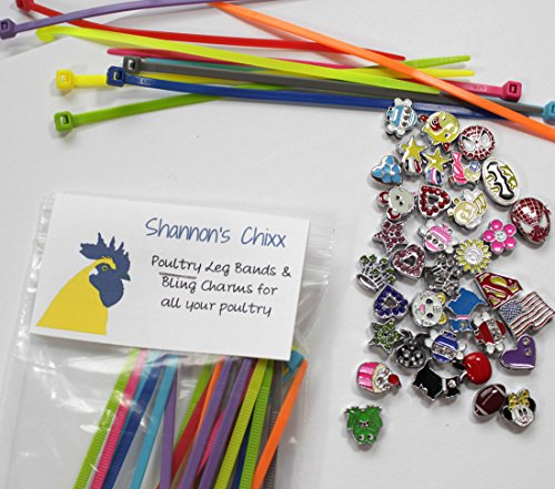 Shannon's Chixx ~ Colorful Poultry Leg Bands with Bling Charms ~ 20 Unique ()