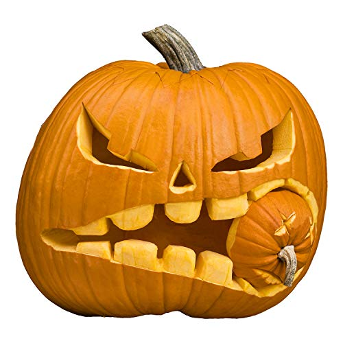 Halloween Haunters 3 Piece Professional Pumpkin Carving Tool Kit - Easily Carve Sculpt Halloween Jack-O-Lanterns - Scooper Scraper, Double Sided Saw, Fine Tooth Saw by Halloween Haunters (Image #3)