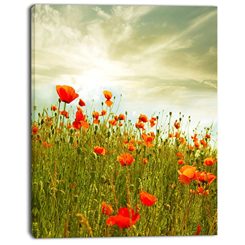 Design Art Red Poppy Flowers in Green Field Floral on Canvas Art Wall Photgraphy Artwork Print by Design Art