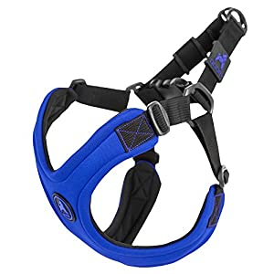 Gooby Escape Free Sport Dog Harness for Dogs that Pulls and Escapes, Blue, Small
