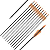 Elong Fiberglass Arrows Archery 24 Inch Target Shooting Practice Safetyglass Recurve Bows Suitable for Youth Children Woman Beginner (12 pcs)