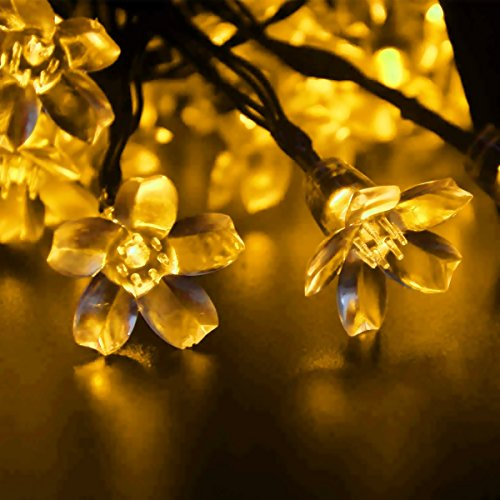 LEDniceker Fairy Solar LED Lights String, 7m 23ft 50 Bright LED Bulbs, for Gardens, Patio, Lawn, Yard, Porch, Garden Fence, Christmas Trees, Camper, Parties, Indoor And Outdoor Activities(Warm White/Yellow Color)