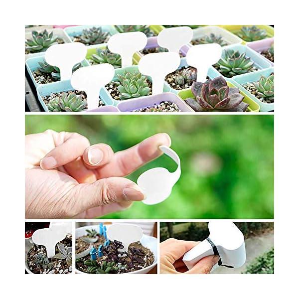 MOPKJH Tag Giardino Impianto di plastica Ecologico Etichette per Piante Spesse Etichette vegetali per Piante da Esterno… 3 spesavip