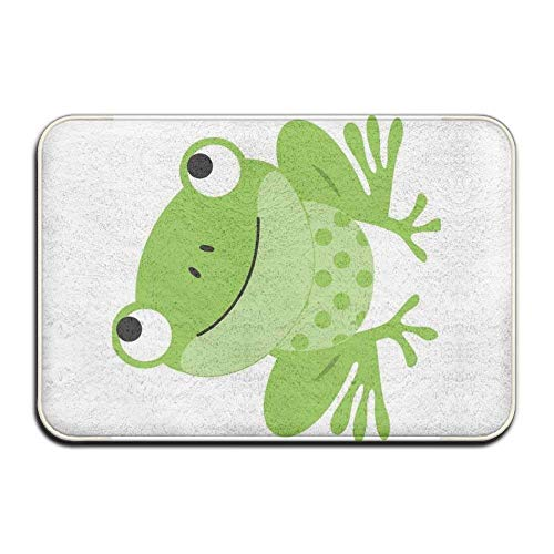 Best Frog Rug For Patio List