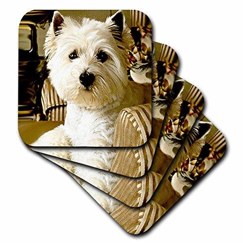 (Dogs West Highland Terrier - Westie - set of 4 Ceramic Tile Coasters (cst_609_3))