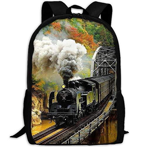 NSBSS-NC School Backpack Train Bookbag Casual Travel Bag For Teen Boys Girls (One_Size, big smoke -