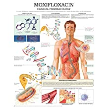 Moxifloxacin e chart: Full illustrated