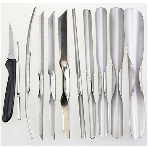 Revesun Culinary Carving Tool Set Fruit//Vegetable Garnishing//Cutting//Slicing Set Garnish Tool Set 11PCS