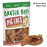 Baxter Boy Prime Extra Thick Whole Pig Ears Odor Free Dog Treats, (15 Pack) – Premium Grade Long Lasting All Unflavored Natural Gourmet Dog Treat Chews – Fresh & Tasty Low-Calorie Treat Review