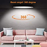 Youtob LED Flush Mount Ceiling Light, 15W 100 Watt