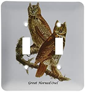 3dRose lsp_114065_2 Great Horned Owl by John James Audubon Double Toggle Switch