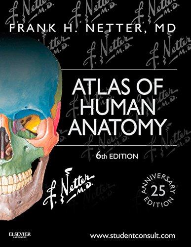 Atlas of Human Anatomy (6th 2014) [Netter]
