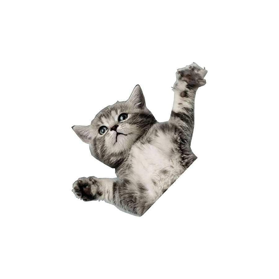 OneballJay Flying Cat Stomp Pad